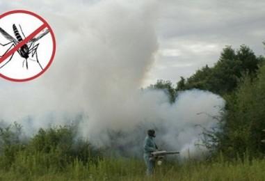 Kreće zaprašivanje komaraca u Zagrebu