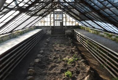Započela obnova najstarijih izložbenih staklenika u Botaničkom vrtu