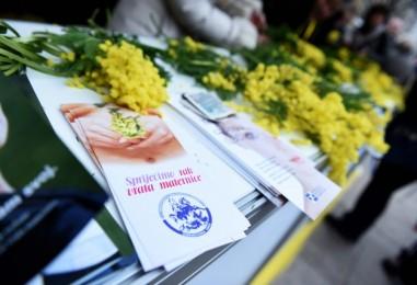 U Zagrebu obilježen deveti Dan mimoza