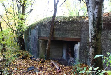 Njemački bunker iz WW2 samo 200 metara od Konzuma na Črnomercu