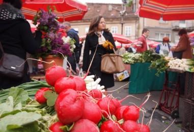 Istraživanje: podrška pretvaranju Branimirove tržnice u modernu europsku eko tržnicu