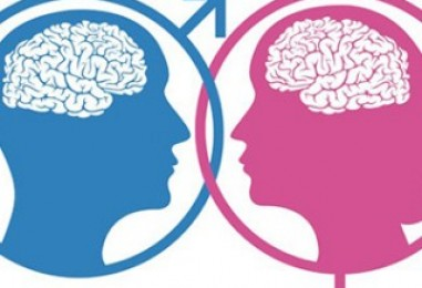 Ženski i muški mozak – postoje li razlike?
