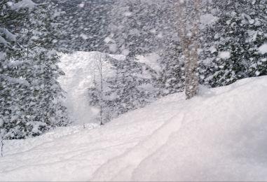 POČELO JE, POČELO…Prvi snijeg na Sljemenu