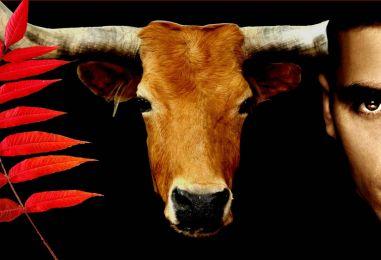 Obilježavanje Međunarodnog dana prava životinja