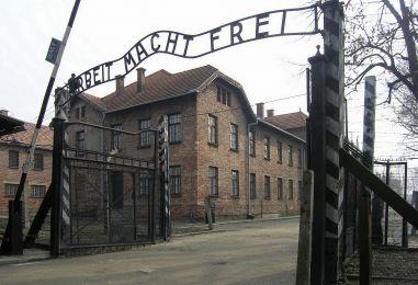 Položeni vijenci za žrtve Holokausta