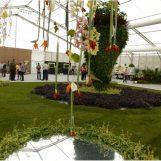 PRAZNIK ZA OČI I DUŠU Ovosvibanjski Floraart će biti veći i ljepši nego ikad