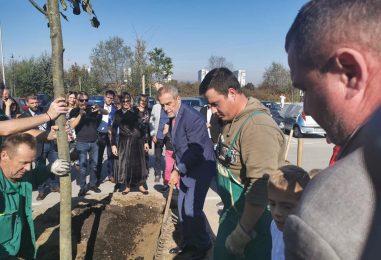 Grad Zagreb donirao više od 500 sadnica radi ozelenjivanja urbanih sredina
