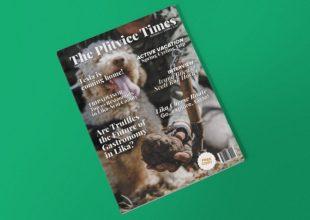 NOVI THE PLITVICE TIMES Više od 100.000 pregleda u samo 10 dana!