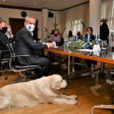 U Uredu gradonačelnika održan sastanak na temu poboljšanja uvjeta u azilu Dumovec